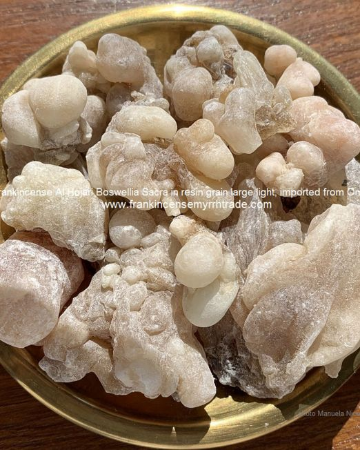 Sales on Omani incense Boswellia Sacra for both retail, wholesale and bulk Incense sales.